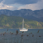 Fr�hling am Attersee - Spring at the Lake Attersee